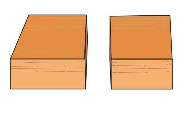 Cross cut illustration