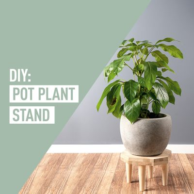 DIY Pot Plant Stand
