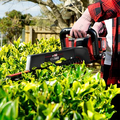 The Ultimate Trimming Guide For Your Garden